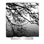 Winter Magnolia Shower Curtain