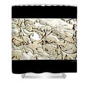 Winter Marigolds Shower Curtain