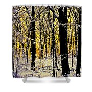 Winter Mood Lighting Shower Curtain