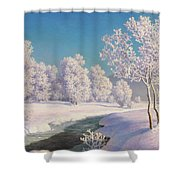 Winter Morning In Engadine Shower Curtain
