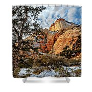 Winter Morning In Zion Shower Curtain
