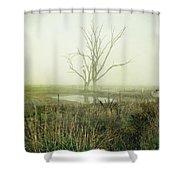 Winter Morning Londrigan 1 Shower Curtain