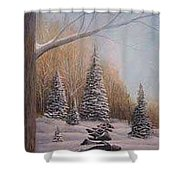 Winter Morning Shower Curtain by Rick Huotari