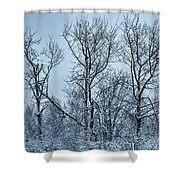Winter Morning View Shower Curtain