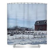 Winter Museum Shower Curtain
