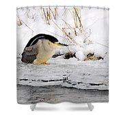 Winter Night Heron Shower Curtain