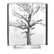 Winter Oak Art Shower Curtain