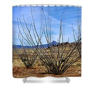 Winter Ocotillo Garden Shower Curtain
