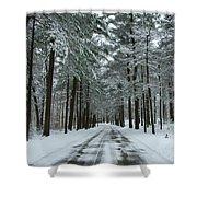 Winter On Mohegan Park Road Shower Curtain
