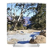Winter On The South Rim Shower Curtain