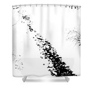 Winter Painting Vi. Ink Drawing By Nature Shower Curtain by Jenny Rainbow