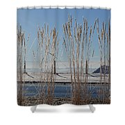 Winter Parade Shower Curtain
