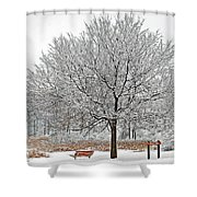 Winter Park Shower Curtain
