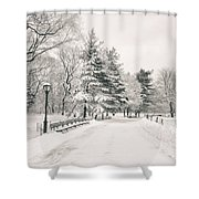 Winter Path - Snow Covered Trees In Central Park Shower Curtain by Vivienne Gucwa