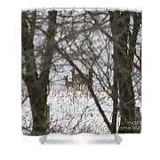 Winter Family Pause  Shower Curtain
