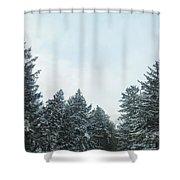 Winter Pines Shower Curtain