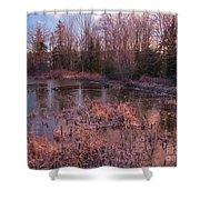 Winter Pond Landscape Shower Curtain
