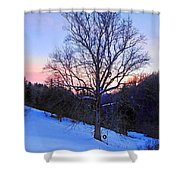 Winter Poplar Tree Shower Curtain