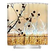 Winter Prairie Shower Curtain