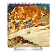 Cougar On The Prowl In Winerer Shower Curtain