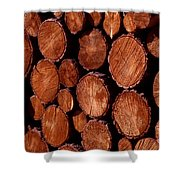 Winter Ready Shower Curtain