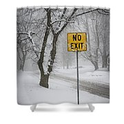 Winter Road During Snowfall IIi Shower Curtain