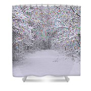 Winter Scene With Lights Shower Curtain