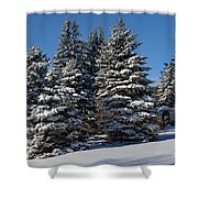 Winter Scenic Landscape Shower Curtain