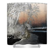 Winter Shroud Shower Curtain