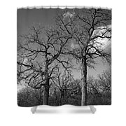 Winter Sisters Shower Curtain