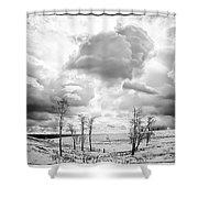 Winter Sky Drama Shower Curtain