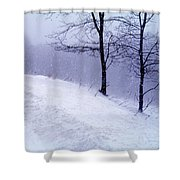Winter Slope Shower Curtain