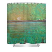 Winter Solitude 7 Shower Curtain