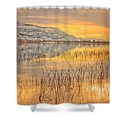 Winter Solstice 5 Shower Curtain