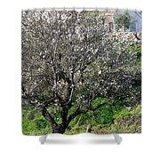 Winter Spanish Nature Almeria Region  Shower Curtain