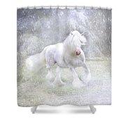 Winter Spirit Shower Curtain