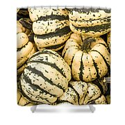 Winter Squash Shower Curtain