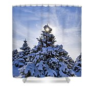 Winter Starburst - D008347 Shower Curtain