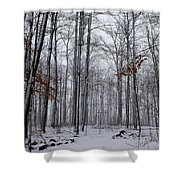 Winter Storm In The Forest Shower Curtain
