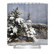 Winter Storm On Natural Bridge - D001598 Shower Curtain