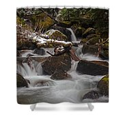 Winter Stream Tranquility Shower Curtain