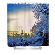 Winter Sunburst Shower Curtain