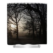 Winter Sunrise Shower Curtain