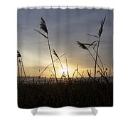 Winter Sunrise In Newport Ri Shower Curtain