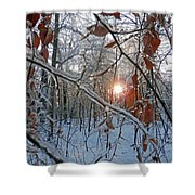 Winter Sunset 2 Shower Curtain