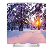 Winter Sunset Through Trees Shower Curtain by Priya Ghose