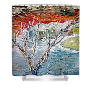 Winter Sunset Shower Curtain by Vadim Levin