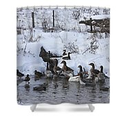 Winter Swimming Hole Shower Curtain