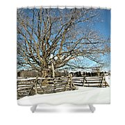 Winter Tree And Fence Shower Curtain