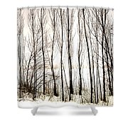Winter Tree Fence 13283 Shower Curtain